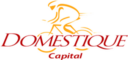 Domestique Capital LLC